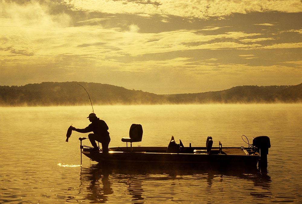 Marina Fishing
